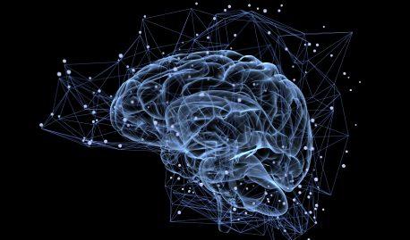Четыре способа успокоить или остановить свой ум