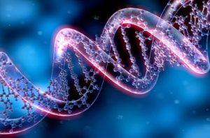 геном и духовная практика