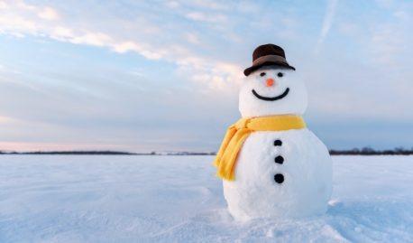 Жил был снеговик